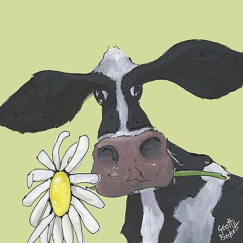 Little Daisy - Canvas Print