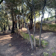 Parc 3 hectares