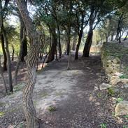 Parc Vestiges pierres