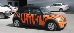 Mini Cooper Full Vehicle Wrapping