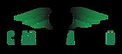 CARA II_Logo.png