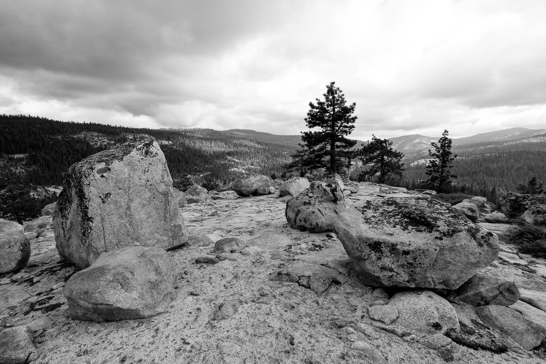 Glacial Erratics - Yosemite - CA