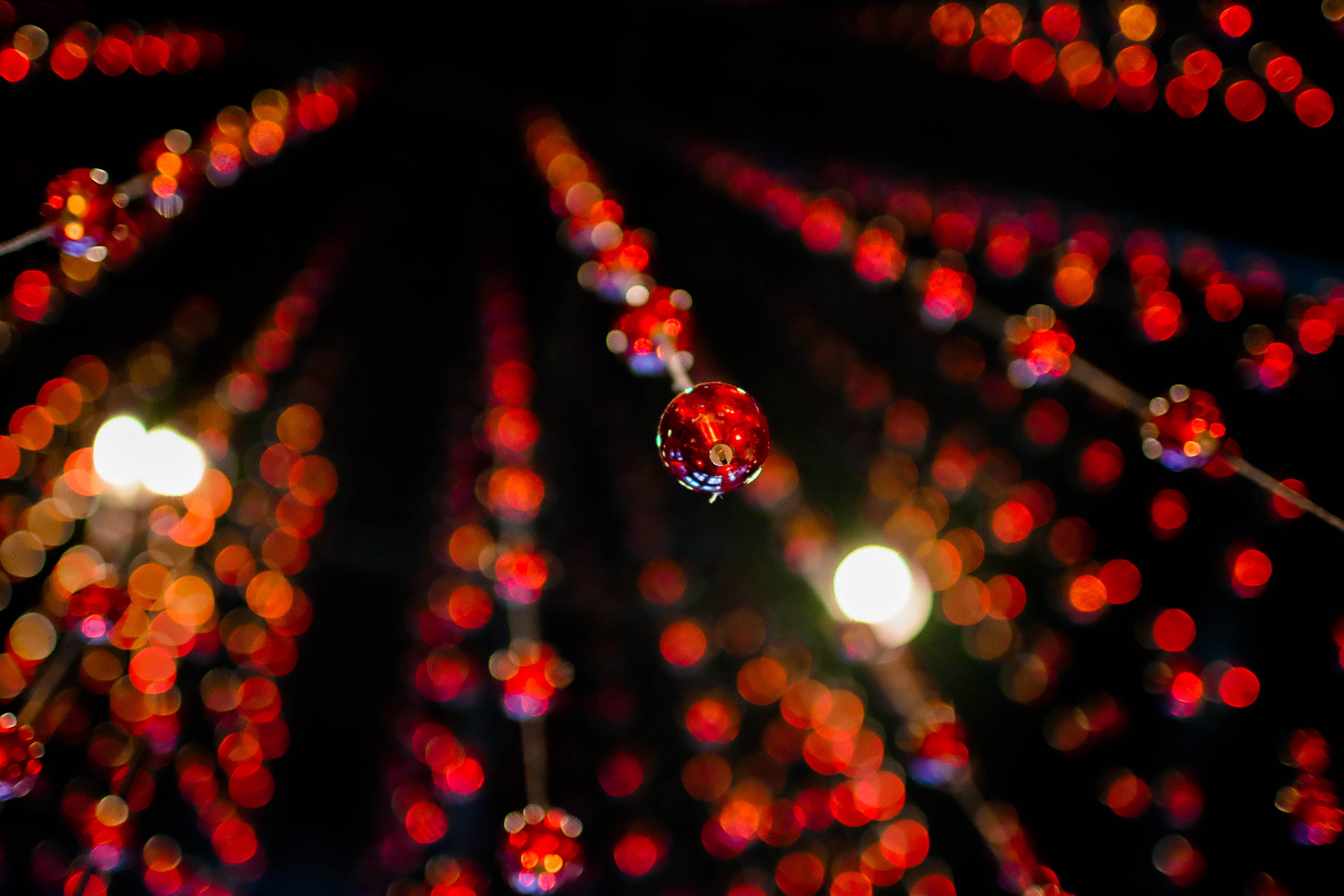 Red Dimension - San Fransisco