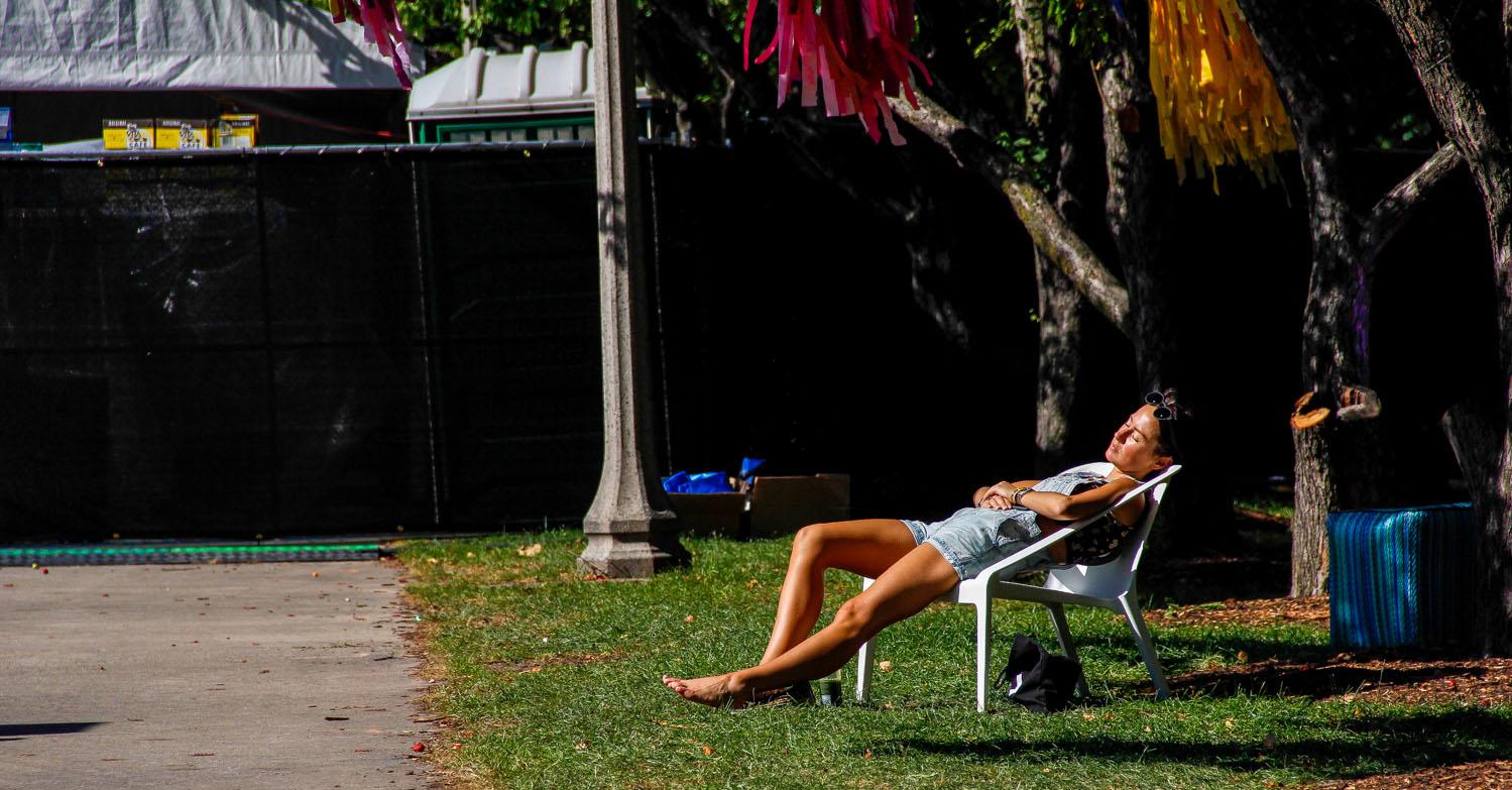Basking Under the Chicago Summer Sun