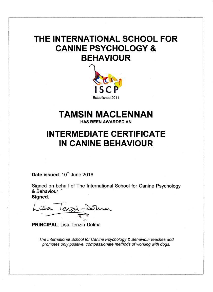 Tamsin Maclennan Diploma