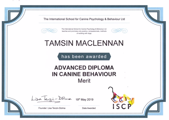 Tamsin MacLennan Advanced Diploma Cert