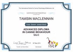 Tamsin MacLennan Advanced Diploma Cert