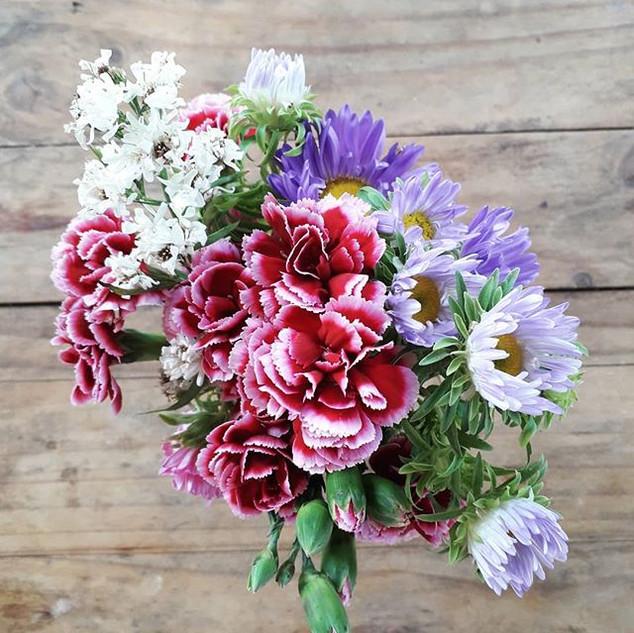 Las flores nuestras amigas constantes 🌸