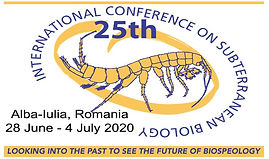 logo_25icsb.jpg