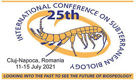 logo_25icsb_1.jpg