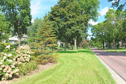 35. Parkway lawn 1