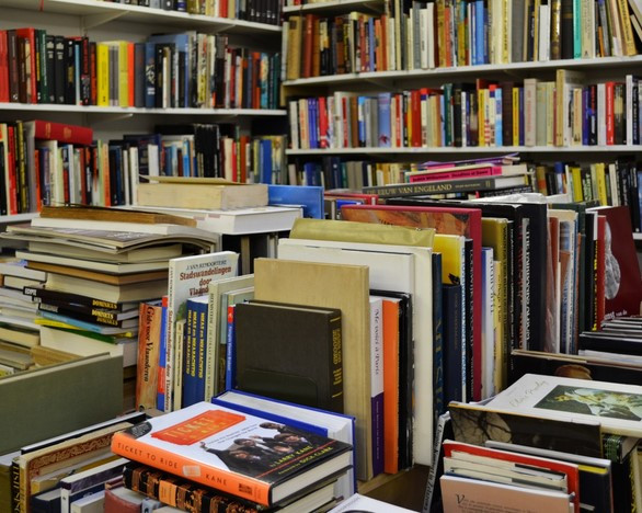 Library filled with books