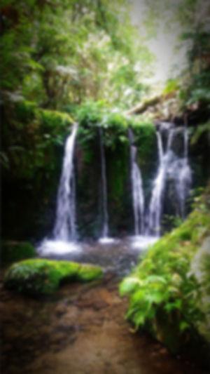 waterfall_web.jpg