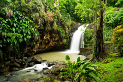 Grenada-caribbean-waterfall-rainforest-holiday