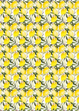 Lemons Roll Wrap 3m x 70cm