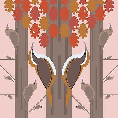 I Like Birds Treecreeper.jpeg