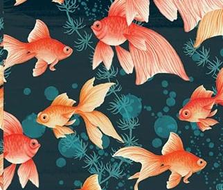 Goldfish Rollwrap 3M