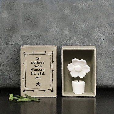 Matchbox Flower Pot