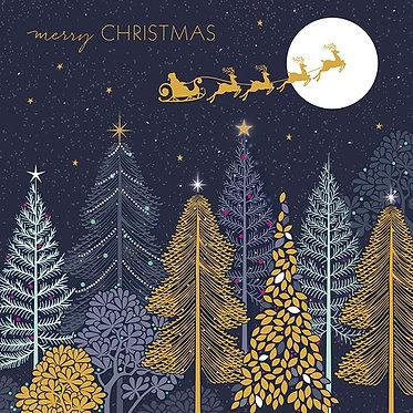 Luxury Christmas Card Box by Sara Miller Sleigh Ride