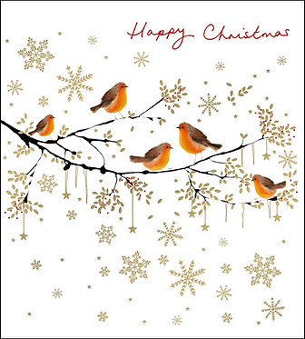 Charity Pack Christmas Cards Robins on Branches