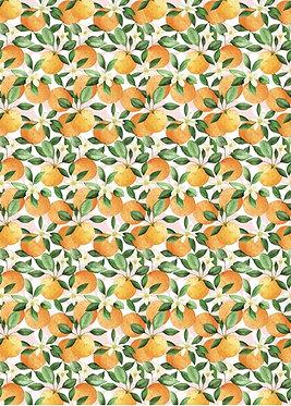Oranges Single Sheet Wrap 50cm x 70cm
