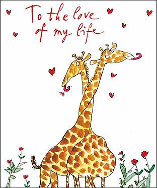 Quentin Blake Love of my Life Valentine's