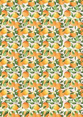 Oranges Roll Wrap