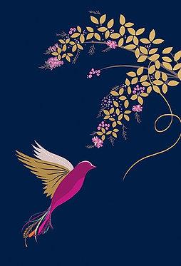 Thank You Box of 10 Cards Sara Miller Bird