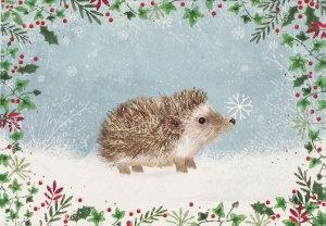 Peter Pauper Christmas Card Box Hedgehog