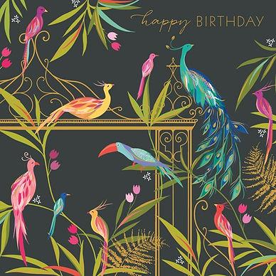 sam92a tropical birds.jpeg