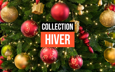 Collection Hiver-3.png