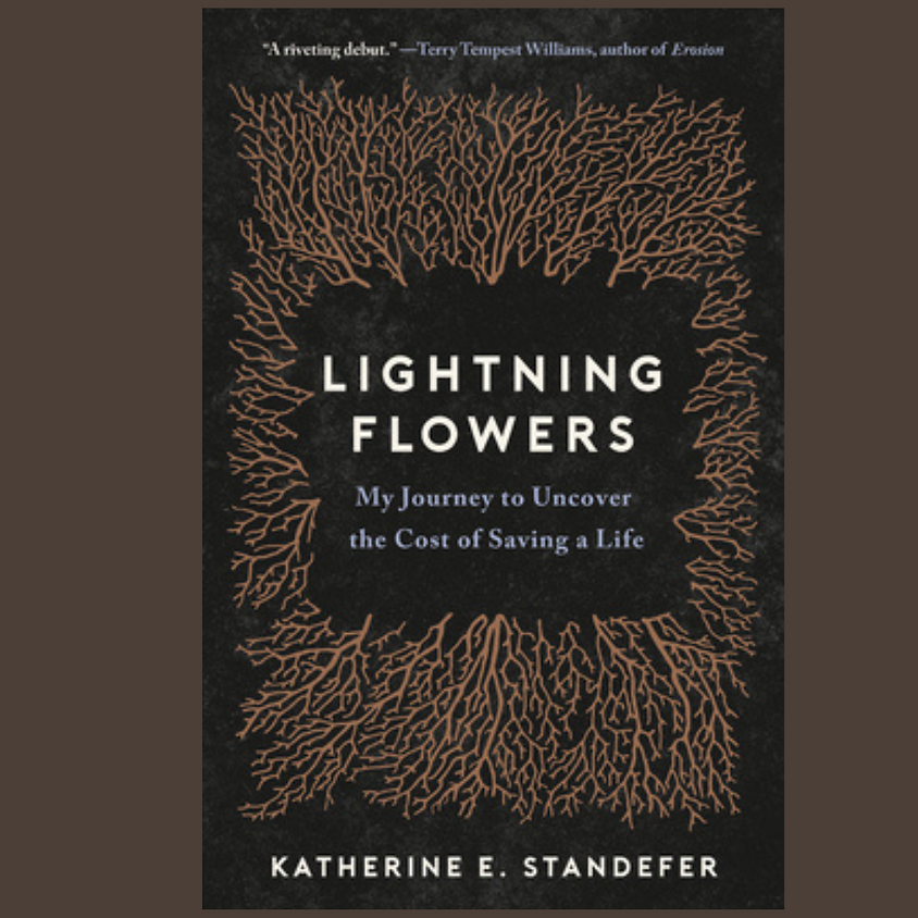 Katherine Standefer, Lightning Flowers (NYT Editors Pick)