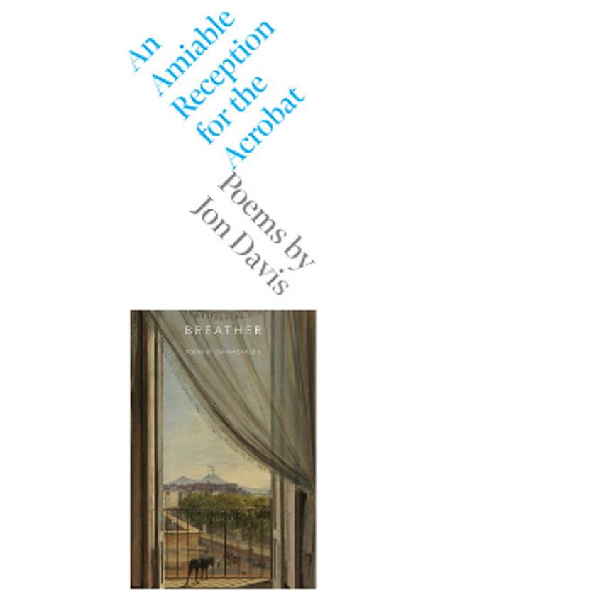 Jon Davis, An Amiable Reception for the Acrobat and Ioanna Carlsen, Breather