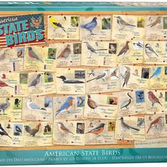 American State Birds.jpg