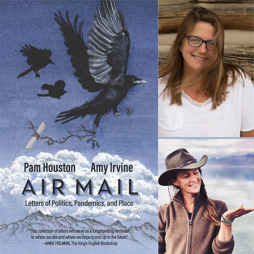 Pam Houston & Amy Irvine, Air Mail: Letters of Politics, Pandemics, and Place