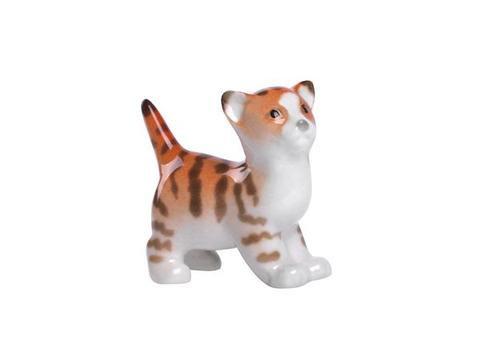 Kitten Fimka