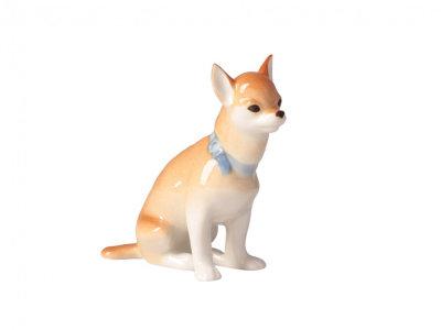 CHIHUAHUA DOG SITTING