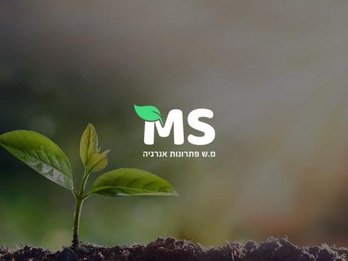 MS.jpg