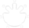 SCPASA Logo (White).png