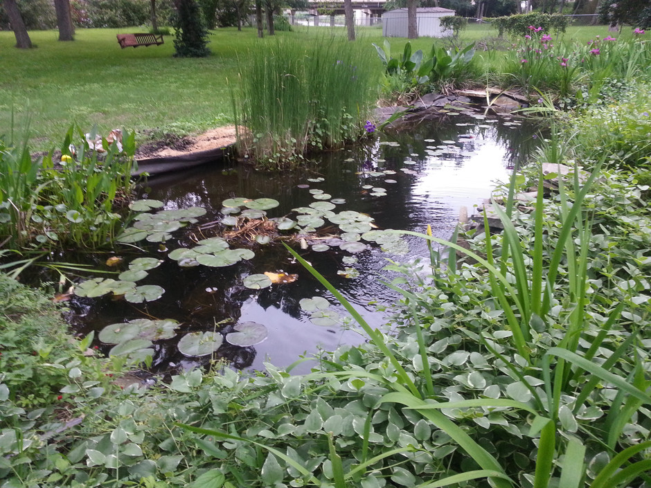 The Water Garden - a Metaphor (from Another Cheesy Family Newsletter)