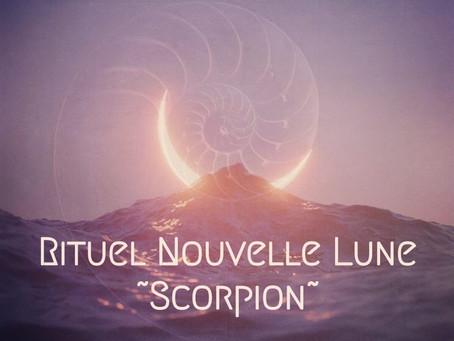 Rituel Nouvelle Lune ~ Scorpion