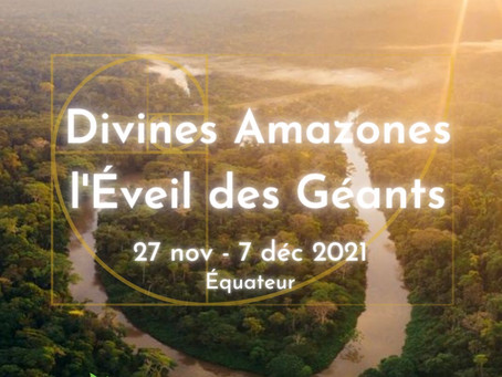 Divines Amazones | l'Éveil des Géants - Novembre 2021