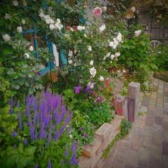 jardin013.jpg