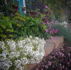 「庭は地上で見られる唯一の夢。失った何かを取り戻すために、人はそれをつくらずには