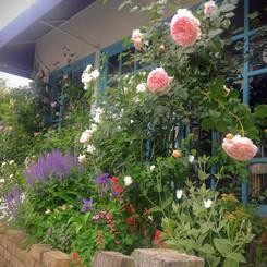 jardin012.jpg