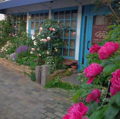 jardin015.jpg
