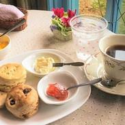 モーニングセット(スコーンとコーヒー)