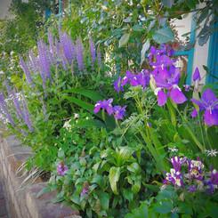 jardin011.jpg