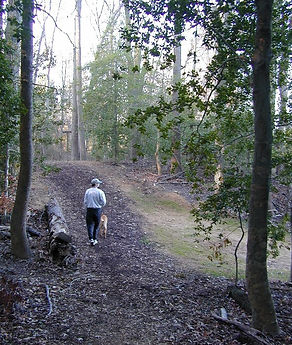Trail-1.jpg