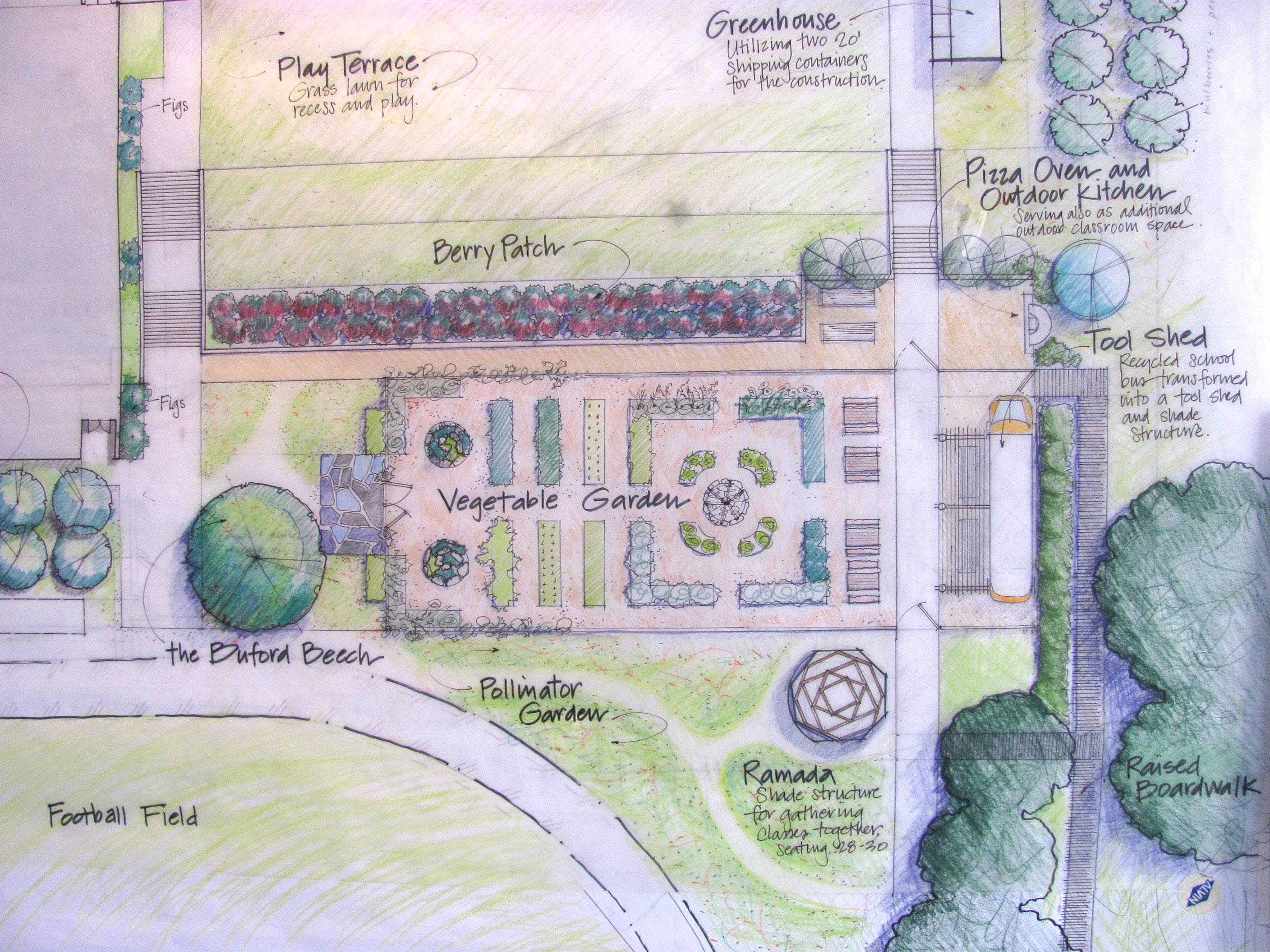 Buford School: Garden Project